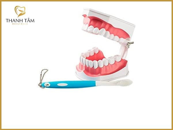 Chăm sóc răng tháo lắp bằng cách đánh răng thường xuyên