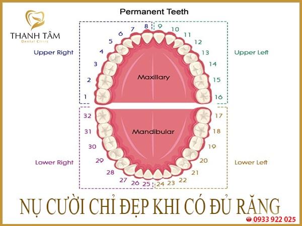 trồng răng số 7