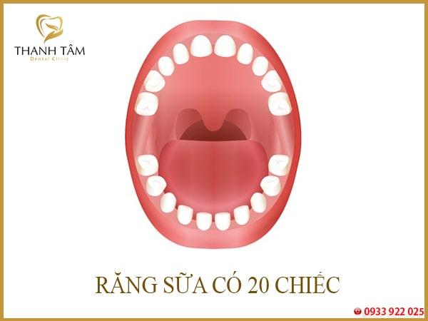 Trẻ bị sâu răng số 6