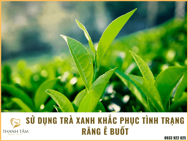 Sử dụng trà xanh